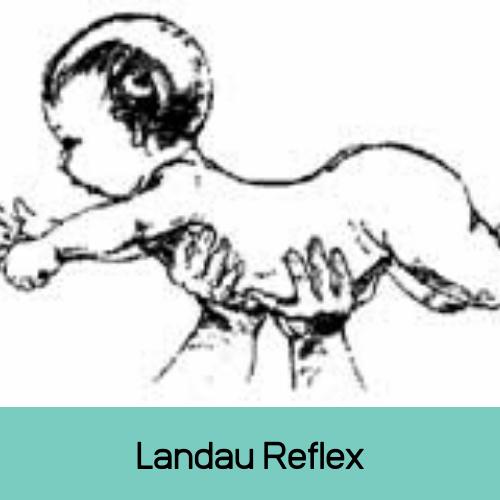 Landau Reflex - Reflexintegratietherapie