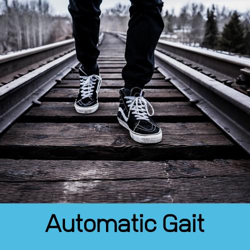 Automatic Gait - reflexintegratietherapie - Buro Lein Ommen