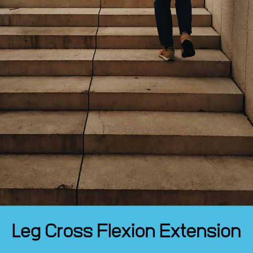 Leg Cross Flexion Extension